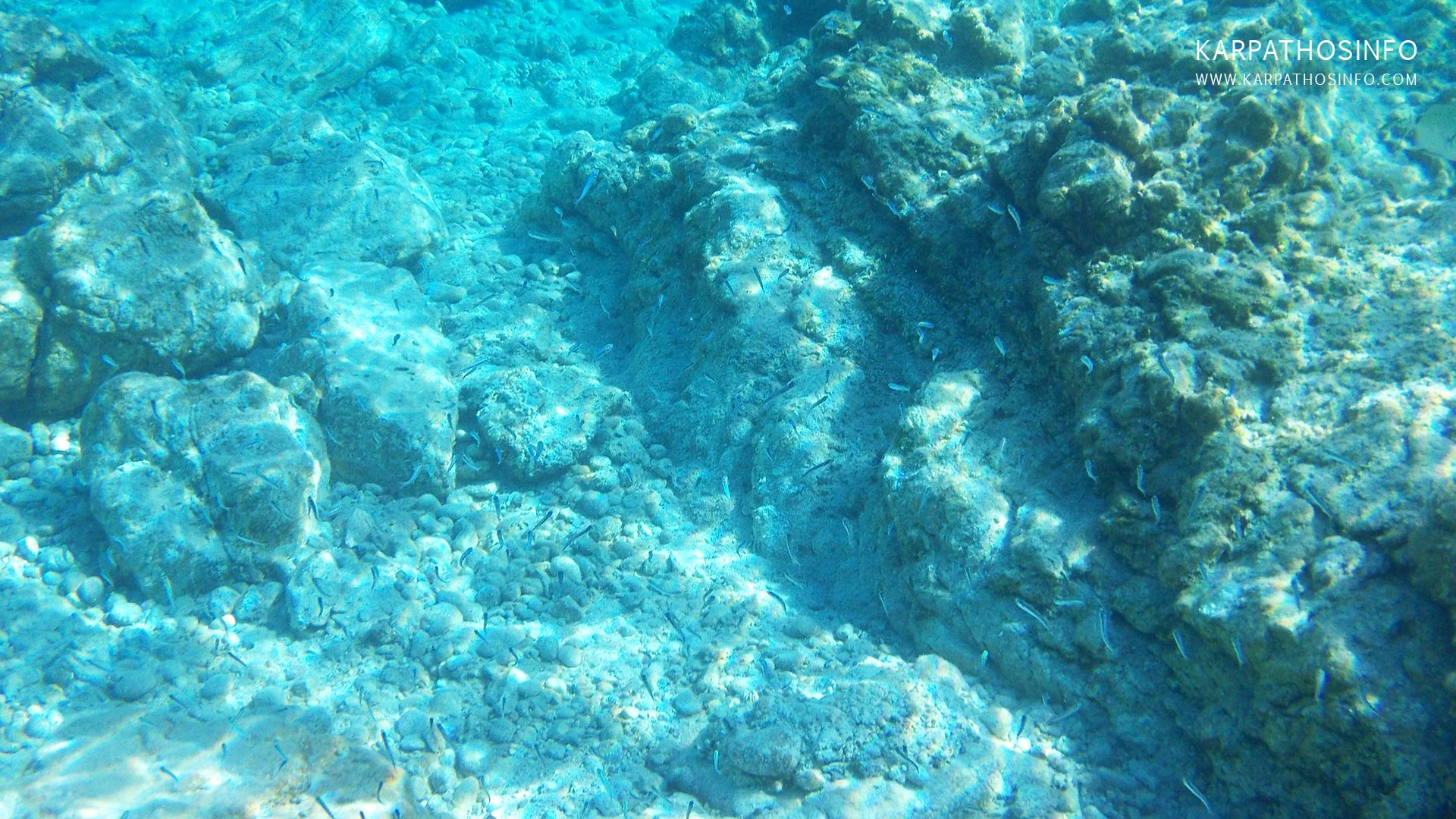 images/slider/diving-snorkeling-in-karpathos-island-greece.jpg